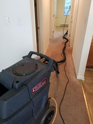Carpet Cleaning in Charlottesville, VA (2)