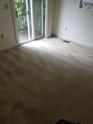 Before & After Carpet Cleaning in Charlottesville, VA (4)